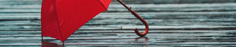 D'n Kroll | Een Blog Hout | Blog | Samenleving | Column