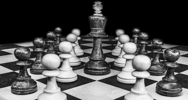 Koning | Een Blog Hout